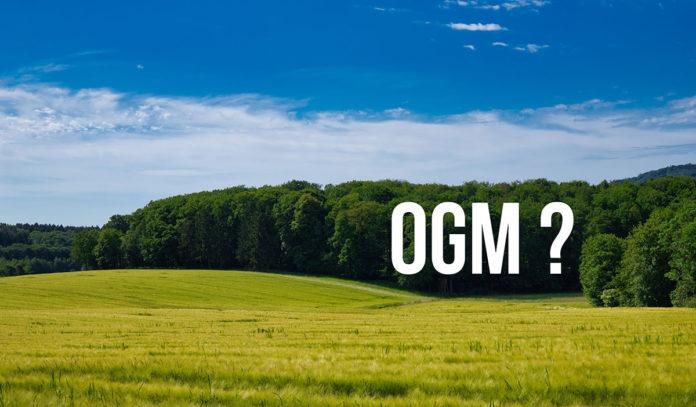 OGM - VrTH
